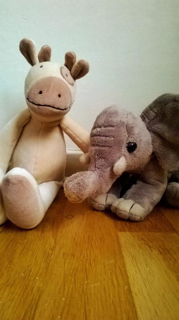 ko o elefant
