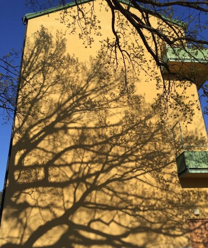 Skugga fasad Kvarnholmen