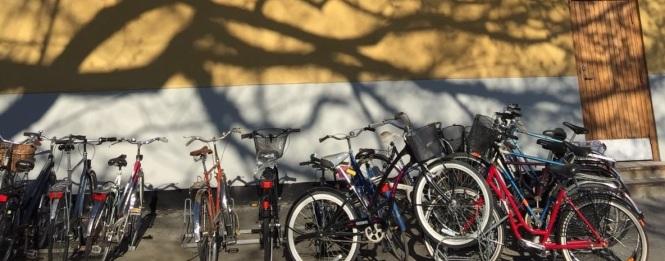 Cyklar skugga fasad 3