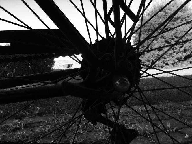 Cykeldetalj svartvit