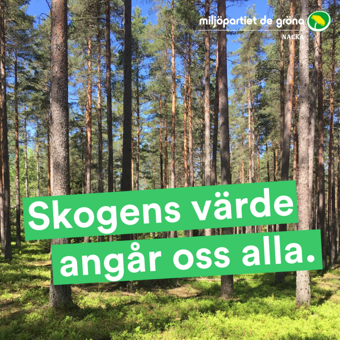 Skogens värde angår oss alla