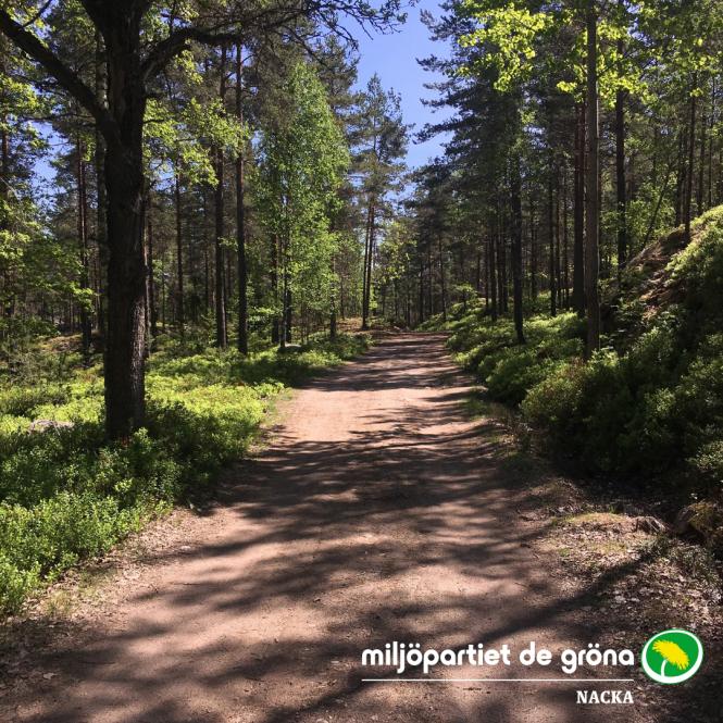 Skogsväg logga